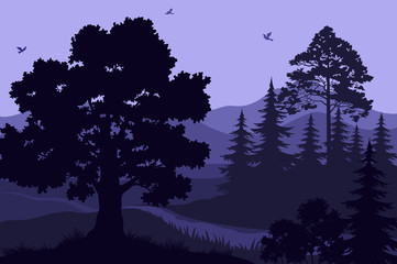 Evening Mountain Forest Landscape, Trees, Bush, Grass and Birds Silhouettes. Vector