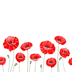 Pattern of poppy flowers.