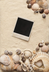 sea shells and polaroid picture