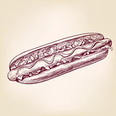 hot dog fast food,hand drawn vector illustration realistic sketch