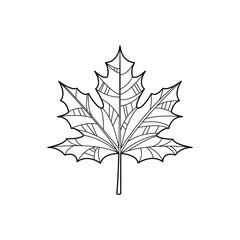 Maple Leaf Zentangle For Coloring