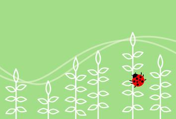 植物のフレーム