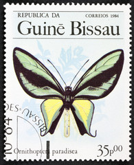 A Stamp printed in GUINEA-BISSAU shows image of a butterfly Paradise birdwing - ornithoptera paradisea, circa 1984