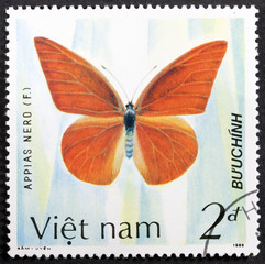 "GROOTEBROEK ,THE NETHERLANDS - MARCH 8,2016 : A stamp printed in VIETNAM shows a butterfly with the inscription ""Appias Nero"", the series ""The butterflies"", circa 1986"