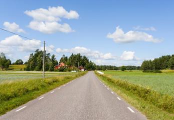 Svensk landsväg på sommaren