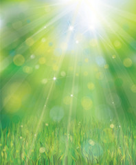 Vector green background with rays, lights and grass border.