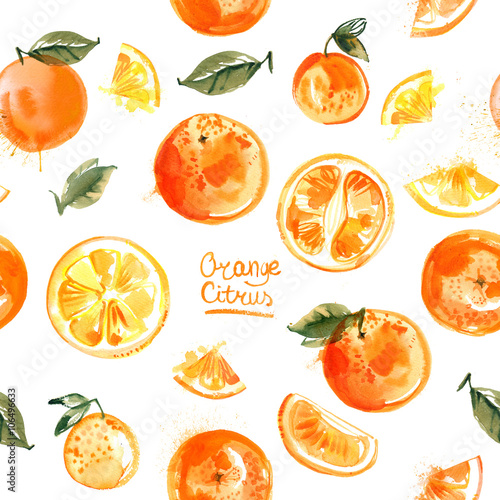 """Pattern oranges painted with watercolors on white ..."