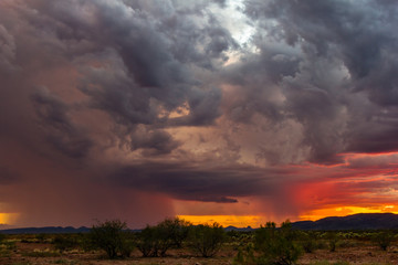 Storm at sunset in the desert near Phoenix, Arizona