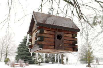 Log cabin bird house frosty