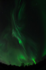 Ribbon Aurora