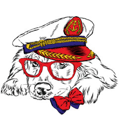 Dog in the captain's cap. Cute puppy. Vector illustration.