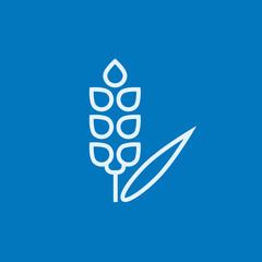 Wheat line icon.