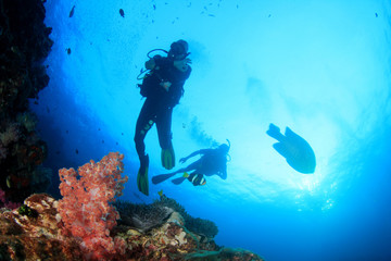 Scuba divers diving on underwater coral reef