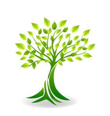 Ecology tree logo vector