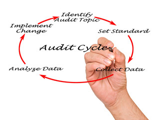 Wall Mural - Diagram of Audit Cycle