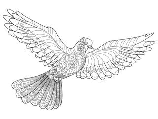 Dove coloring vector for adults