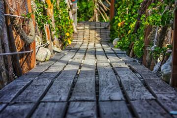 wooden bridge in tropics