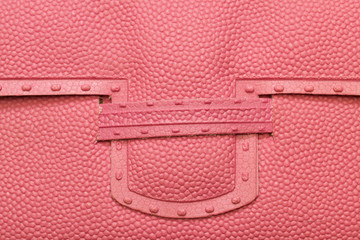 pink bubbles plastic  purse