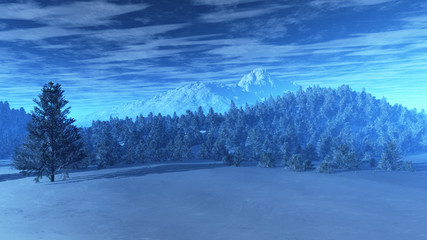 Winter Scene with Pine Forest