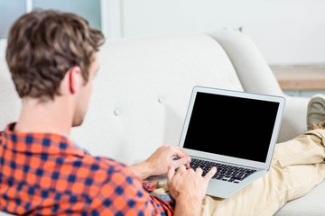 Handsome man using laptop on couch