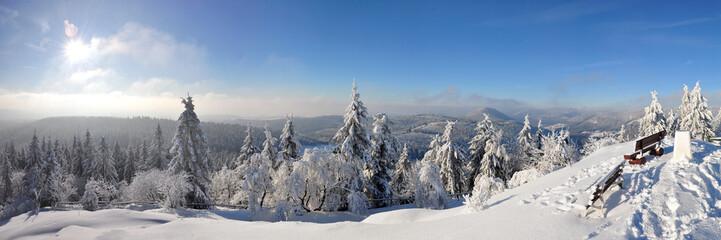 Winter-Panorama vom Thüringer Wald