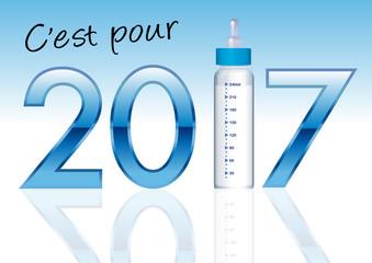 2017 - Faire part de naissance - Garçon