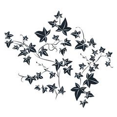 Black doodle ivy leaves