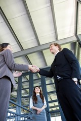 Businessman shaking hands with businesswoman