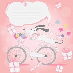 Funny little white puppy on Bicycle