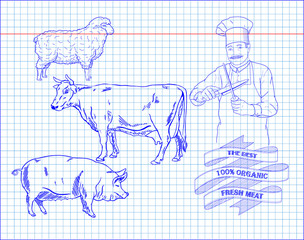 butchering beef diagram, pork, lamb and cook