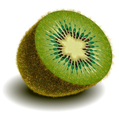 Cut in half kiwi fruit with a shadow on a blank background