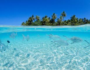 sea beach relaxation landscape