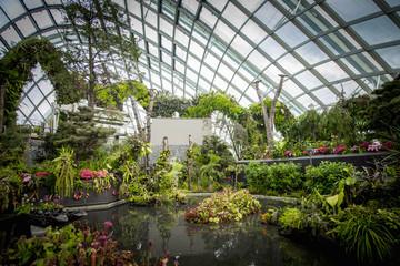 Ornate garden in greenhouse