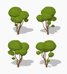 Low poly green tree. 3D lowpoly isometric vector illustration. The set of objects isolated against the white background and shown from different sides