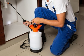Midsection of man spraying insecticide on sink pipe