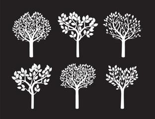 Set of White Trees. Vector Illustration.