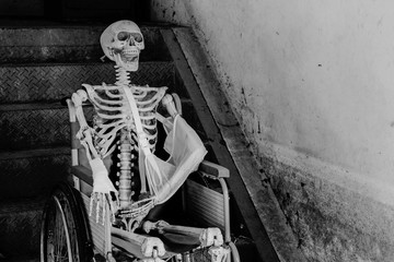 Human skeleton Sitting in a wheelchair
