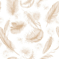 Texture transparente avec des plumes dessinées à la main.
