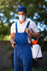 Front view of pest worker spraying insecticide
