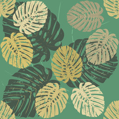 Pattern with tropical leaves of Monstera