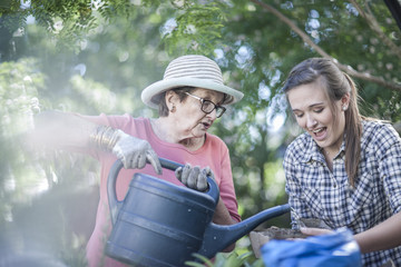 Senior woman and teenage girl watering plant in garden