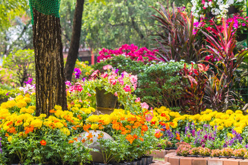 Flowers in the garden on summer. /Landscaped flower garden with lots of colorful blooms on summer.