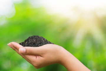 Asian woman hands holding soil for planting with a green bokeh