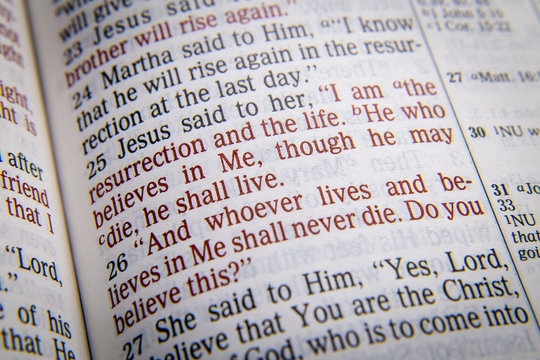 Bible text - I AM THE RESURRECTION AND THE LIFE