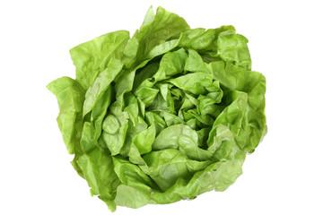 Salat Kopfsalat Gemüse von oben Freisteller freigestellt isolie