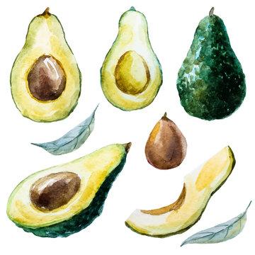 Watercolor avocado set