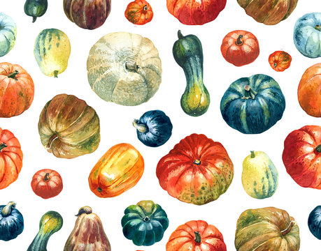 Seamless pattern of pumpkins painted with watercolours