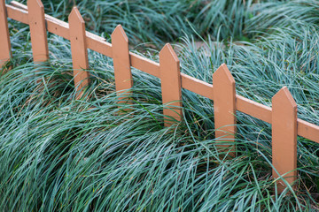 Old small fence on the green grass
