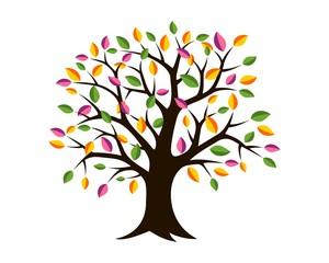 Colorful Leaves Tree Logo