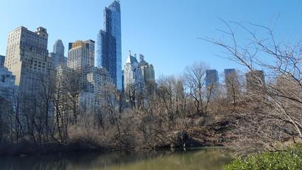 Central Park of New York City, NY, USA